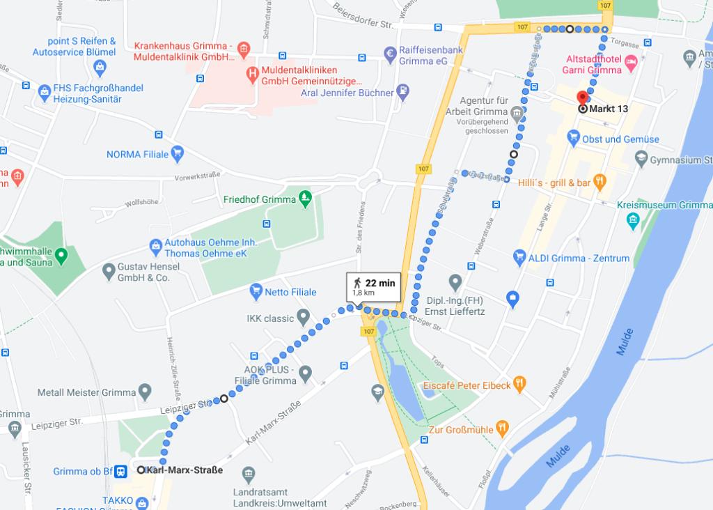 """Route der Bewegung """"Leipzig nimmt Platz"""" an 28. August 2020 - Screenshot: Google Maps"""